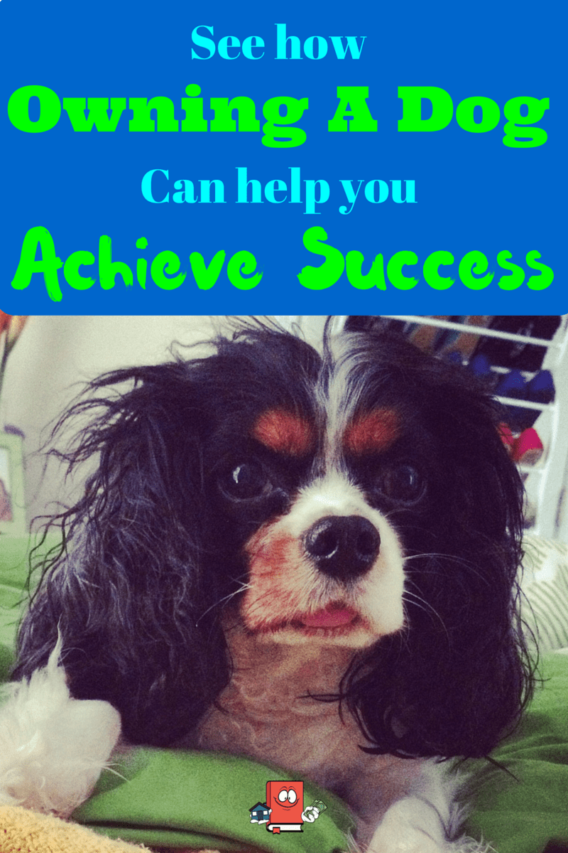 having a dog helps you be successful